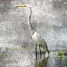 White Egret by leapdaybride