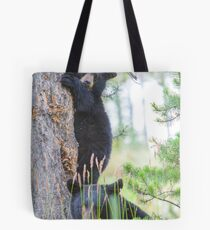 Baby Bear and Momma Tote Bag
