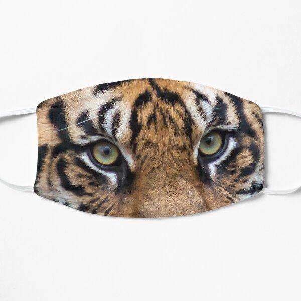 Sumatran Tiger at the National Zoo Mask