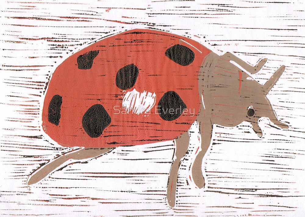 Ladybird by Sandra Everley