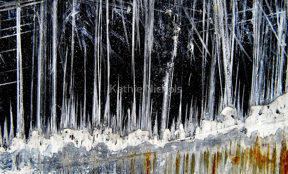 Ice Forest by Kathie Nichols