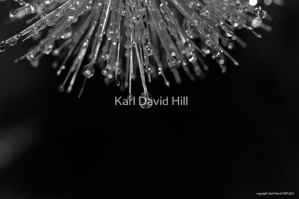 macro flora 039 by Karl David Hill