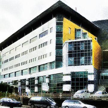Christchurch Women's Hospital by PictureNZ