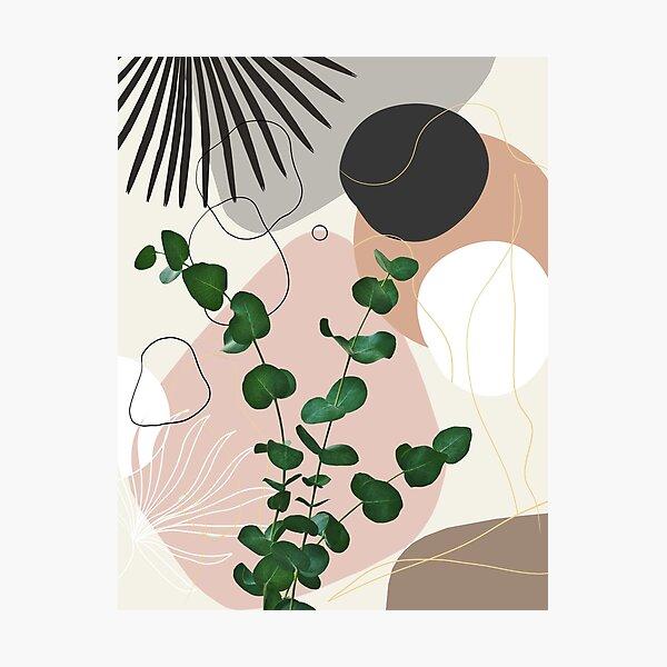 Eucalyptus Fan Palm Finesse #1 #tropical #decor #art Photographic Print