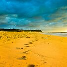Wamberal Beach NSW Australia by Andy Eftichiou