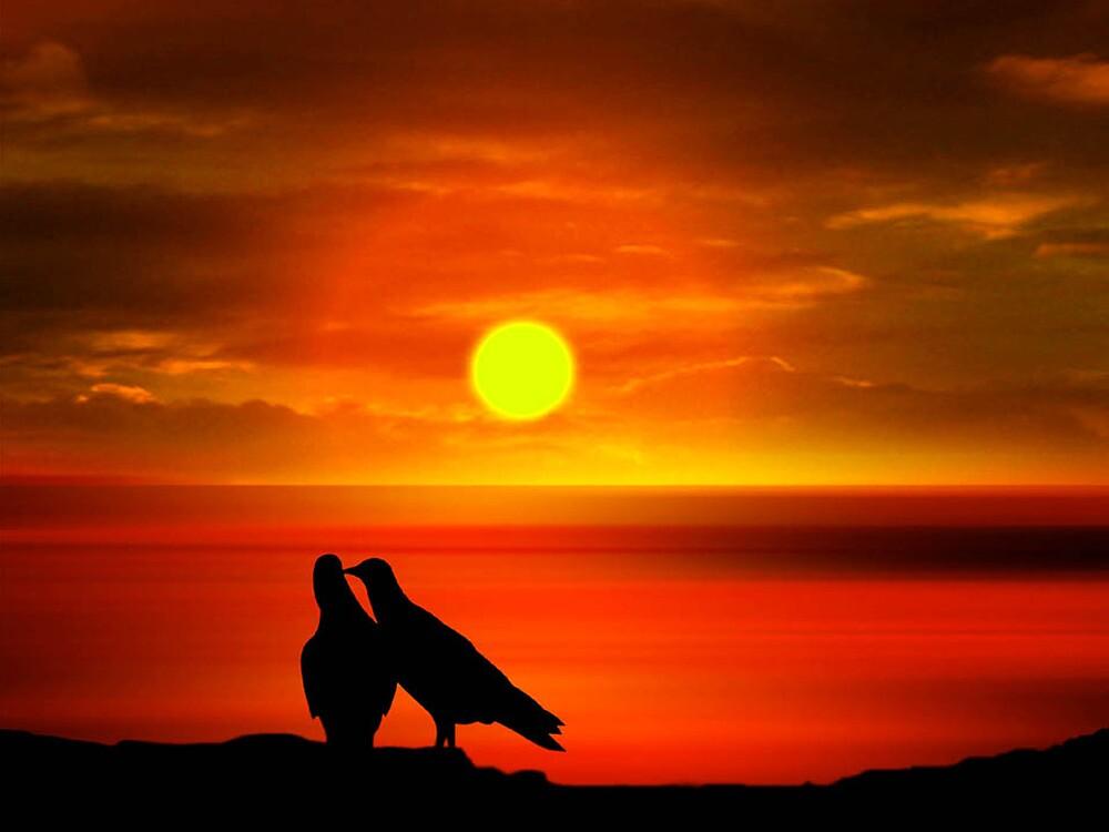 Love Beyond Sunset Point by sirgulamhusain