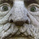 Statue Stare by Sandy Edgar