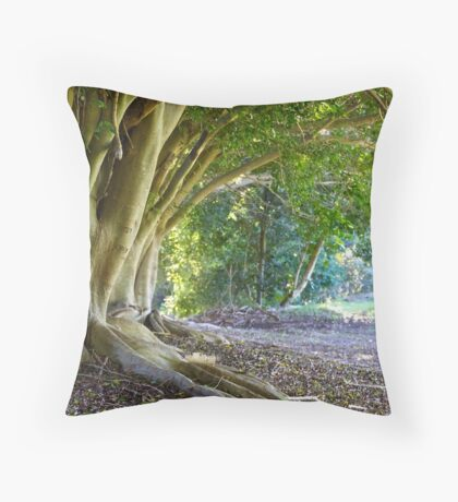 Early Morning Figs Throw Pillow