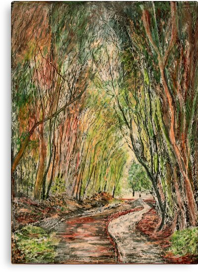 A Walk in the Woods by Kathie Nichols