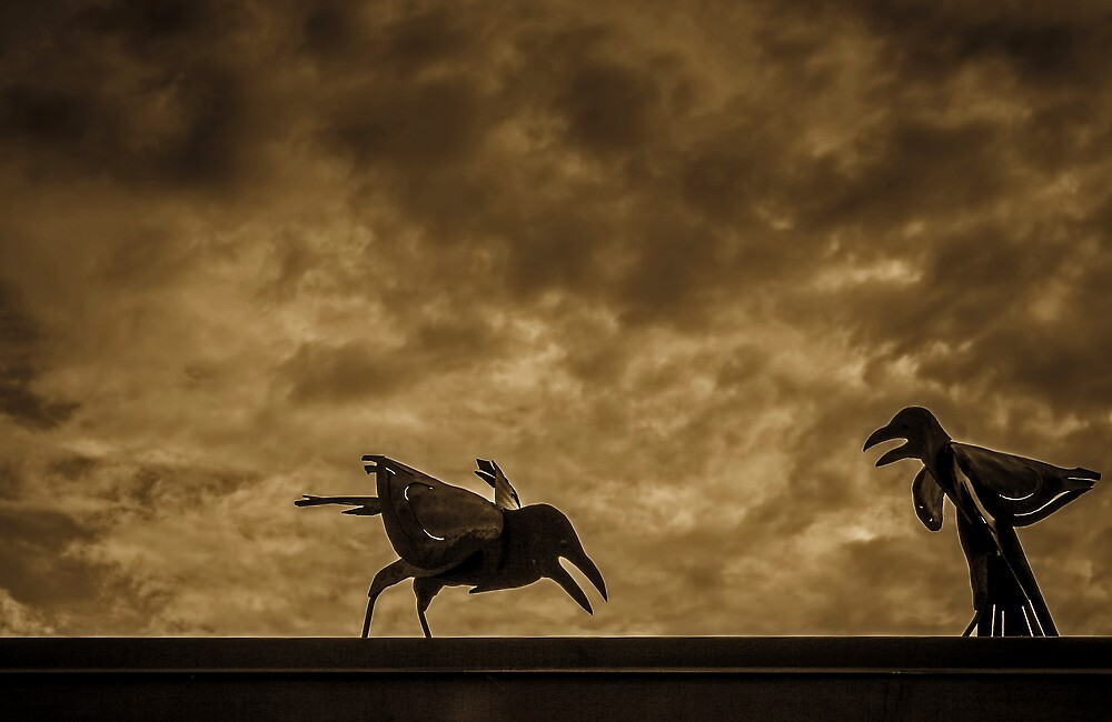 Mocking Birds by Steve Walser