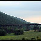 OLD TRAIN TRACKS by BOLLA67