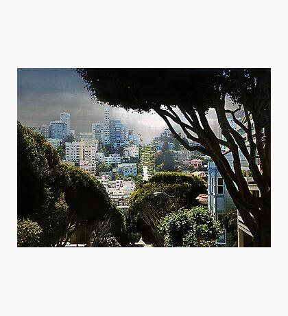 Landscape on Lombard Street, San Francisco Photographic Print