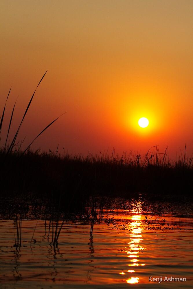 Sunset on Delta by Kenji Ashman