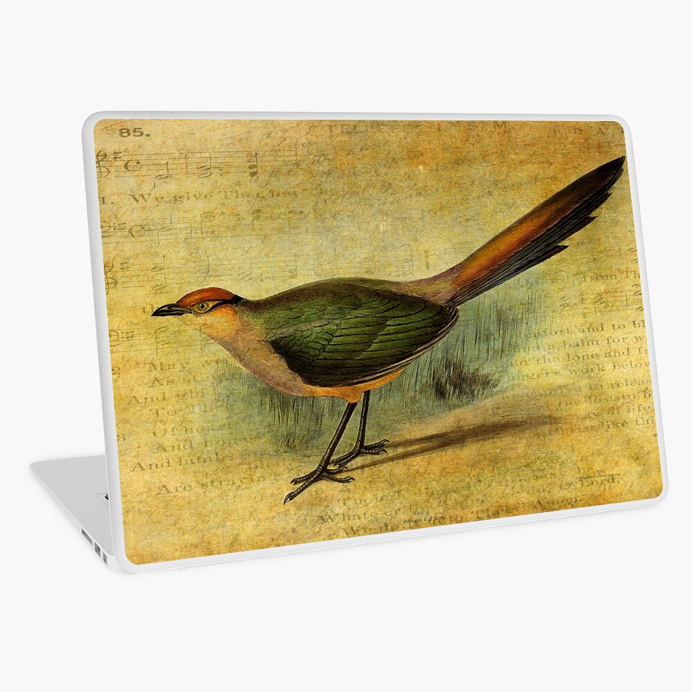 The Cuckoo's Note Laptop Skin