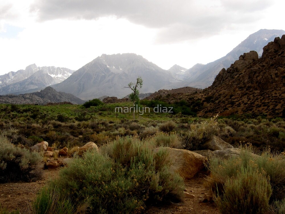Thunder In The Sierras by marilyn diaz