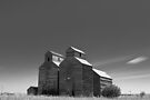 Times gone by by Nate Welk