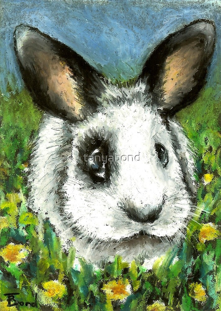 Pirate bunny in a dandelion sea by tanyabond