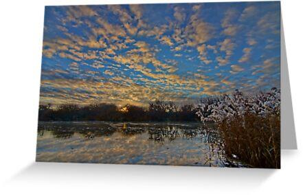 Sunrise reflections - Longford, Tasmania, Australia by PC1134