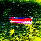 A Splash Of Pink by Fara