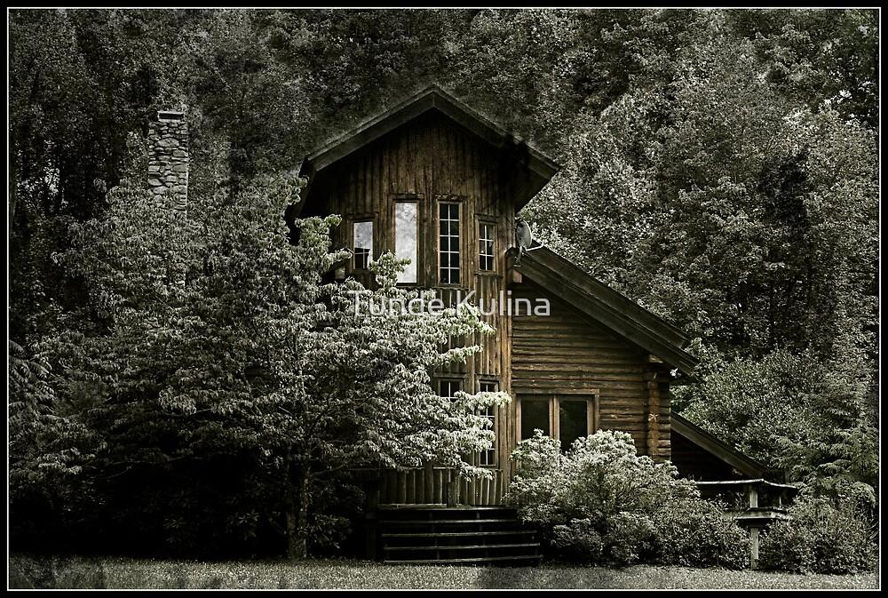 Otthon by Tunde Kulina