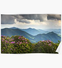 Póster Blue Ridge Appalachian Mountain Peaks y Spring Rhododendron Flowers