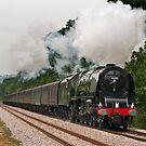 LMS Princess Coronation Class 6233 Duchess of Sutherland by Steve  Liptrot