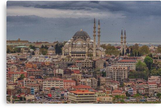 Suleymaniye Mosque by Asif Patel