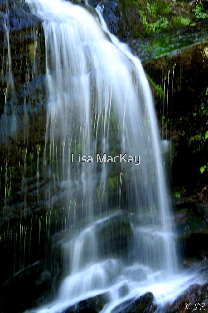 Fuller Falls by Lisa MacKay