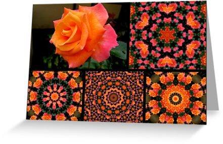 Flowers and kaleidoscopes # 2 by Esperanza Gallego