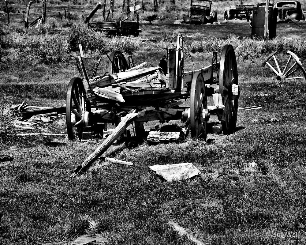 Vehicle Graveyard by Bob Wall