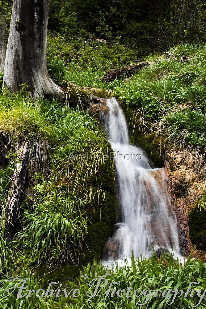 Falls by ArchivePhoto