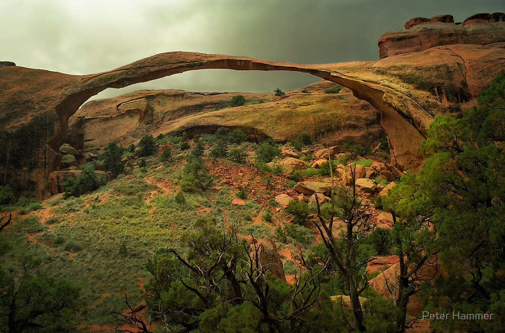 Landscape Arch by Peter Hammer