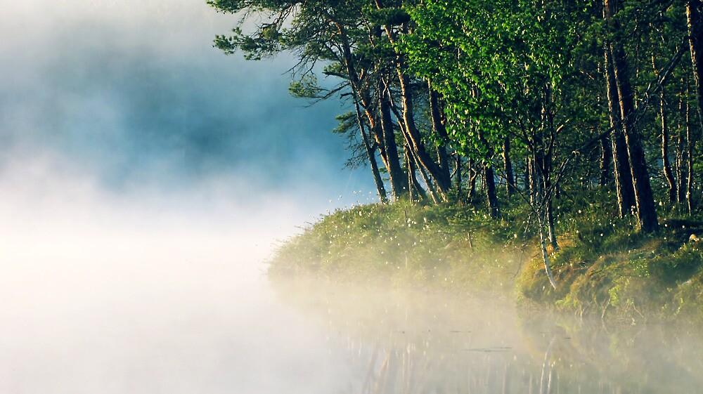 16.6.2012: Sweet Serenity by Petri Volanen