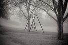 Murrumbeena Park by Christine Wilson