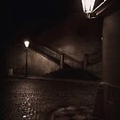 Midnight Stroll by Matthew Pugh