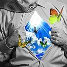 blueskys and butterflys by John Ryan