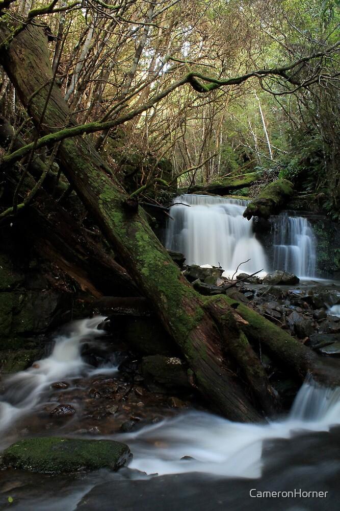 Strickland Falls by CameronHorner