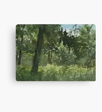 Plein Air 4 Canvas Print