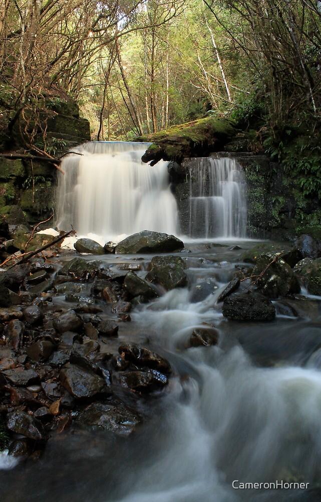 Strickland Ave Falls 2 by CameronHorner