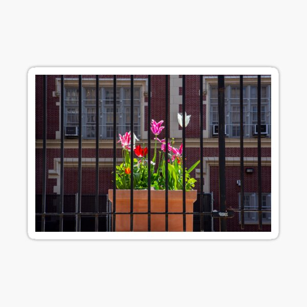 Flowers During Lockdown 2020 in New York City Sticker