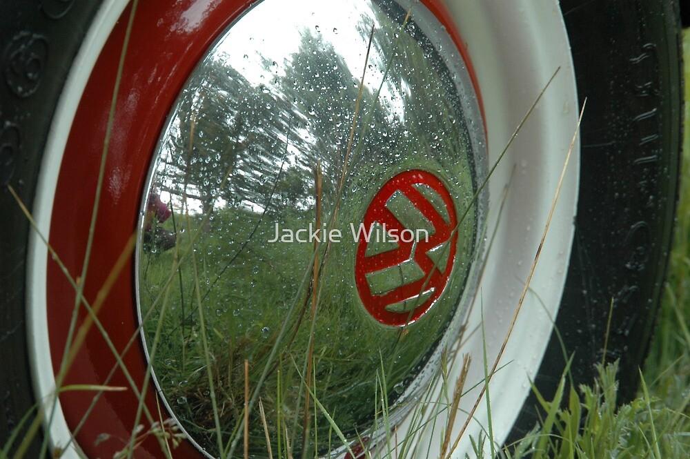 Bug Wheel  DUBFEST Druridge Bay by Jackie Wilson