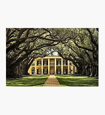 Oak Alley Plantation Photographic Print