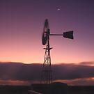 Montagu  Windmill by phillip wise
