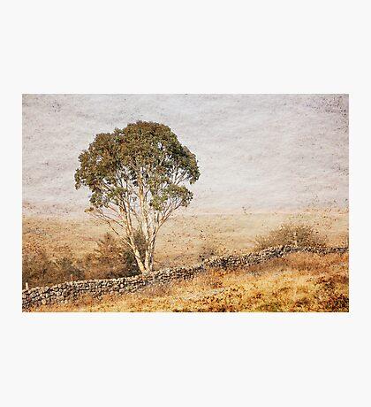 Breaon Beacons Wales Photographic Print
