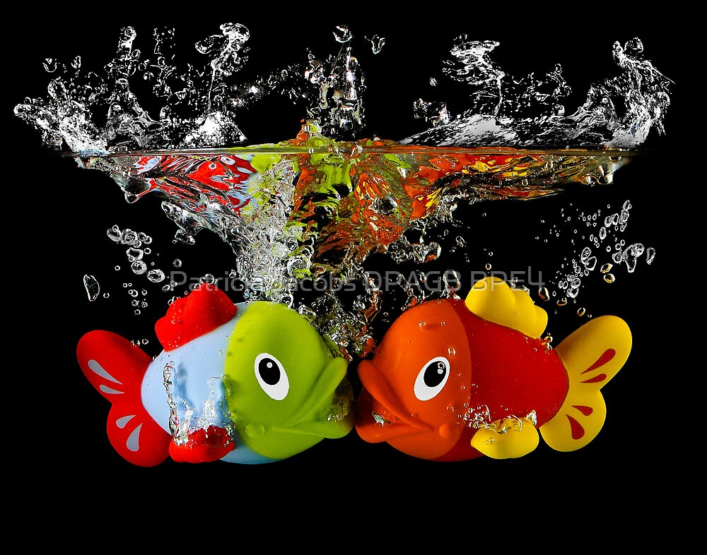 Two Toy Fish Kissing by Patricia Jacobs DPAGB BPE4