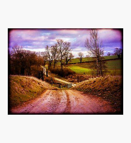 Winter Landscape Photographic Print