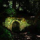 sanctuary by Neil Messenger