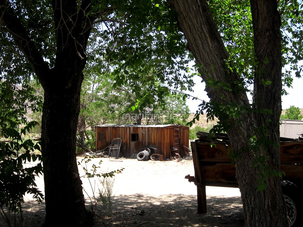 Wood Cart In The Shade by marilyn diaz