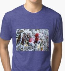 Frosty Berries Tri-blend T-Shirt
