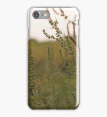 Prairie. iPhone Case/Skin